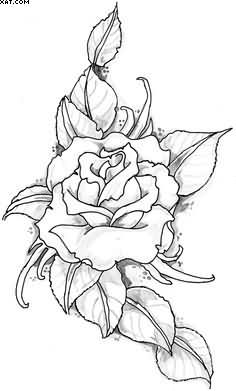 Rose Vine Drawing