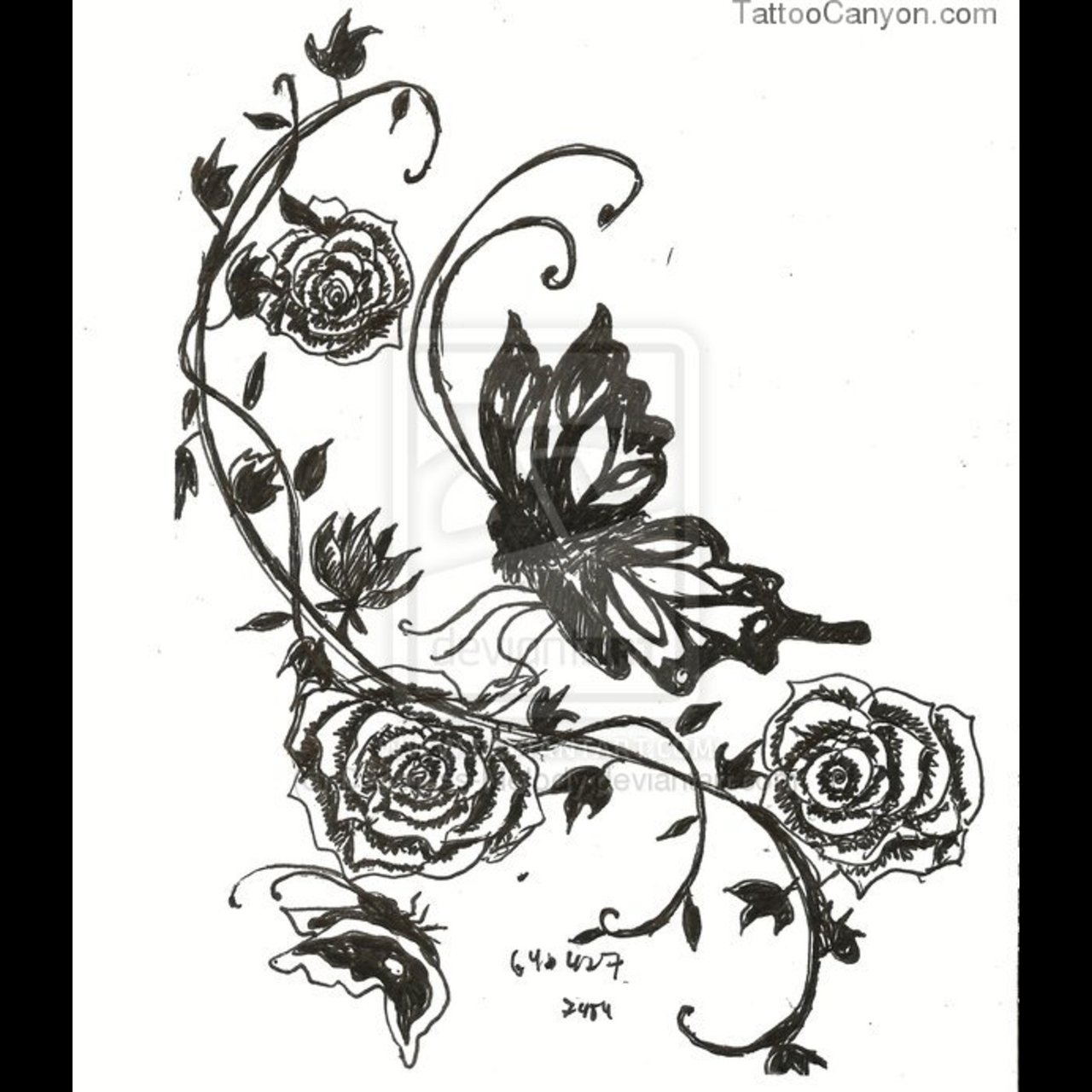 It is a photo of Clean Rose Vine Drawing
