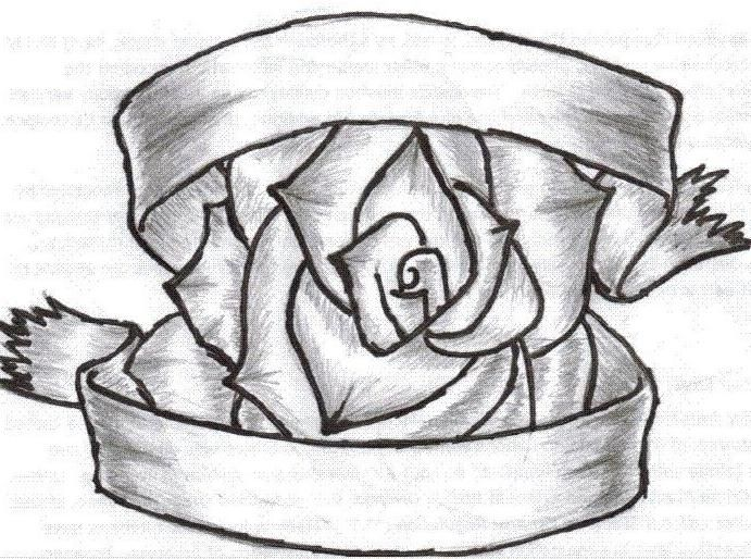 Rose With Ribbon Drawing