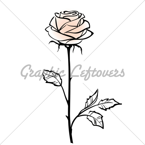 pink gl flower vase with Rose With Stem Drawing on Tentation Nina Ricci also Wires And Flowers Concepts 305 additionally 1865799 Pink Tulips Bouquet In Vase Isolated On White Background moreover Tea Rose also 1864784 Pink Tulips Bouquet In Vase Isolated On White Background.
