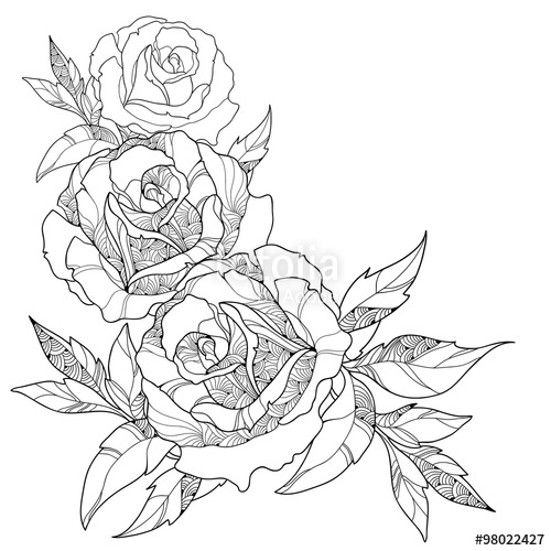 500x500 Stem With Ornate Rose Flower And Leaves Isolated On White
