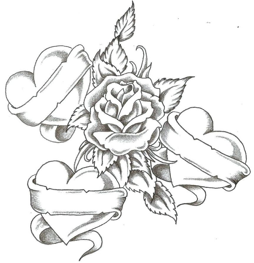 863x896 To Draw Blue Rose Color Pencil Drawing How Stem Coloring Flowers