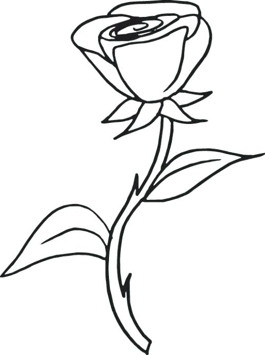 518x693 Coloring Page Rose Drawn Hearts Rose 7 Coloring Pages Hearts