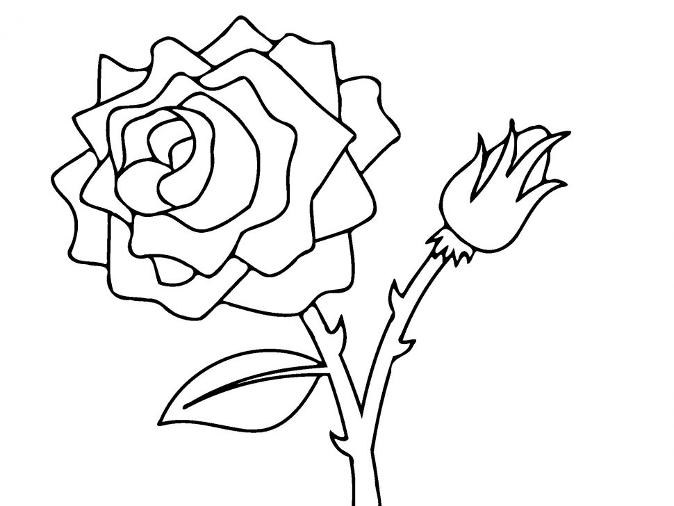 970x728 Coloring Pages Cute Coloring Pages Draw A Rose For Kids Flower