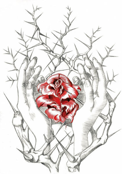 421x600 Rose Bush With Thorns Drawing