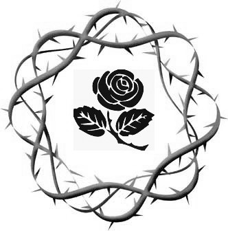 332x336 A Rose Among The Thorns Story Tour