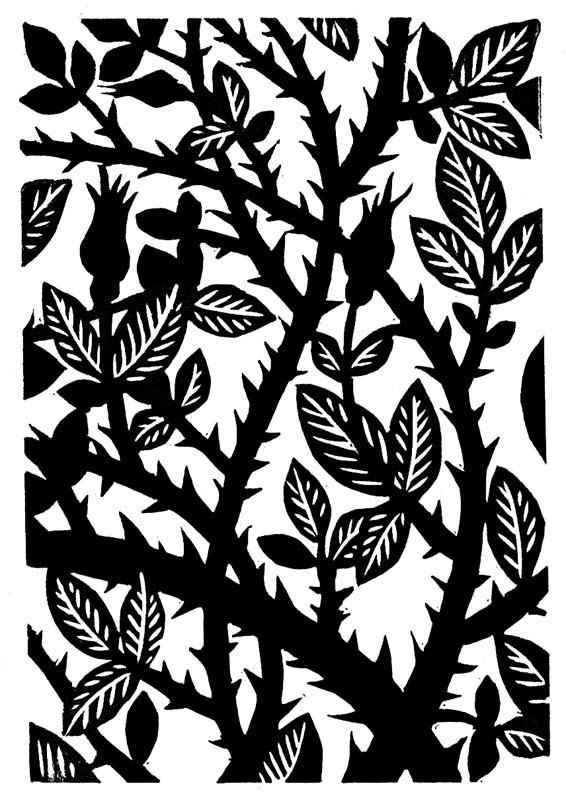 566x800 Rose Thorns Linocut