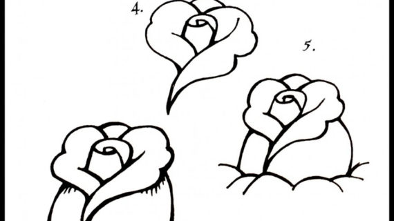 570x320 Rose Step By Step Drawing How To Draw A Rosebud Artworks