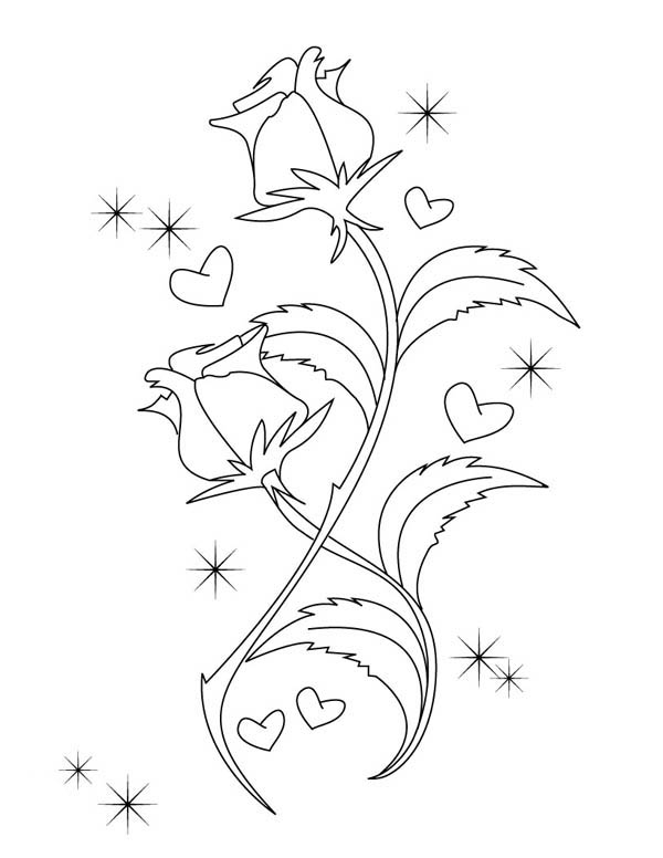 600x776 Hearts Amp Roses, Beautiful Drawing Of Hearts And Roses Coloring