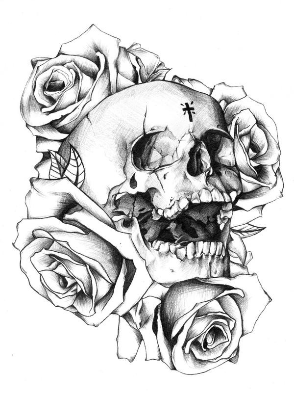Roses And Skulls Drawing