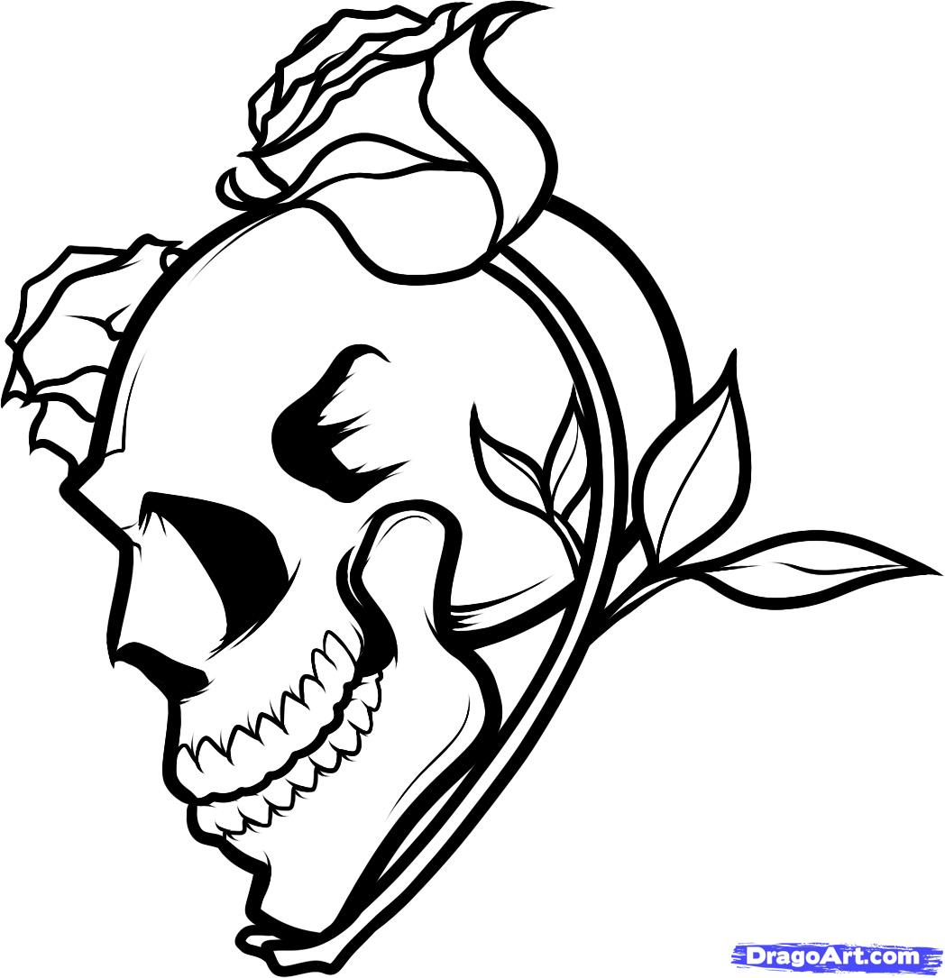 1048x1085 Skull With Roses Drawing Draw A Skull And Roses, Skull And Roses