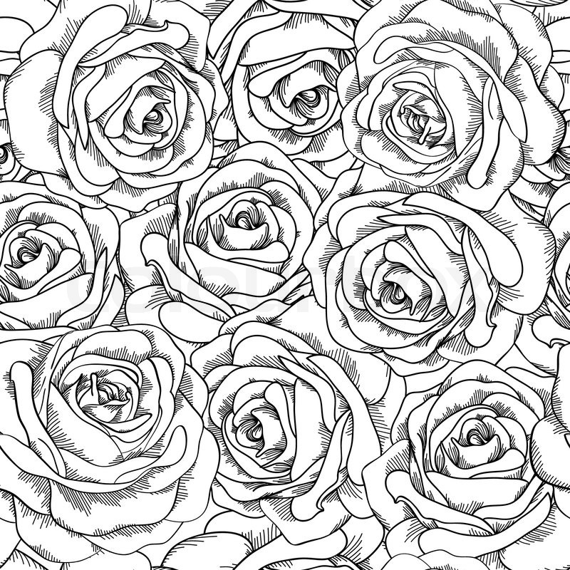 800x800 Black And White Seamless Background. Roses Hand Drawn. Stock