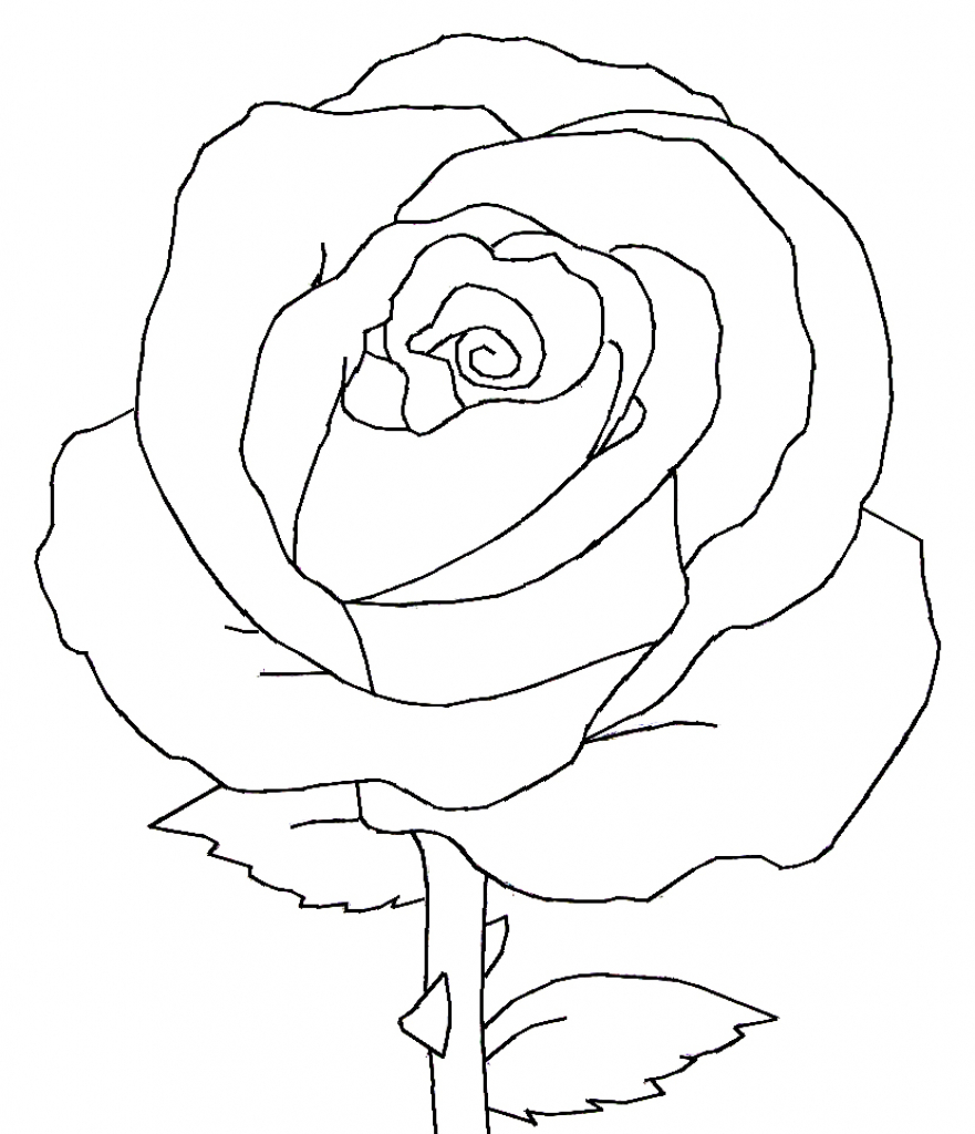 881x1024 Rose Black And White Drawing Collection
