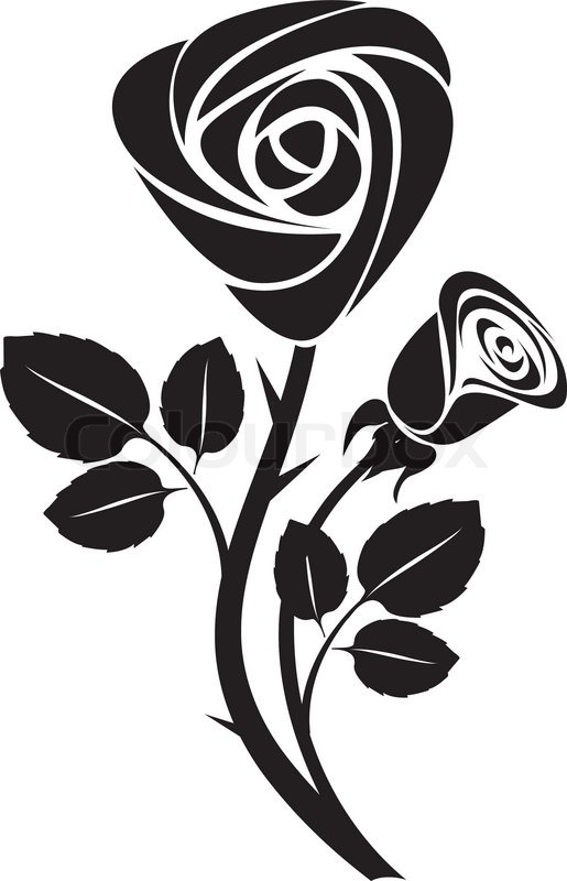515x800 Sketch Black Rose Art Colorful Vector Illustration Stock Vector