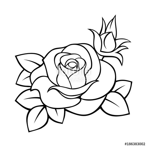 500x500 Vector Black White Contour Drawing Of A Rose. Stock Image