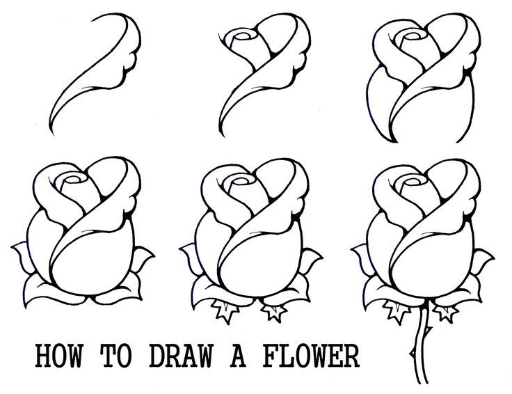 736x566 Inspiring Ideas Easy To Draw Roses How A Rose Step By Drawing
