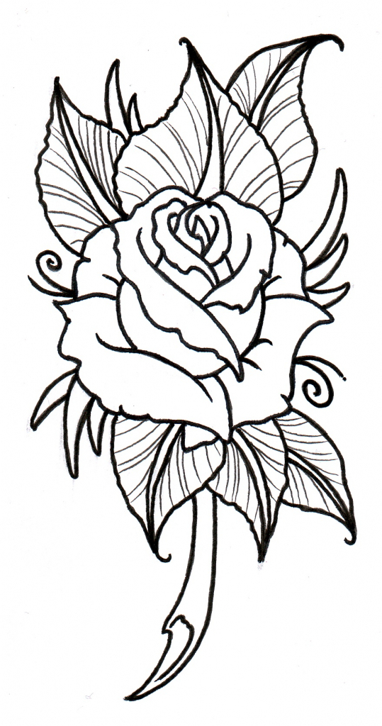 539x1024 Rose Drawing Outlines 1000 Images About Art On Easy