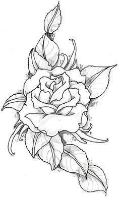 236x391 Easy Pencil Drawings Of Flowers Art By Prem Com Sketch