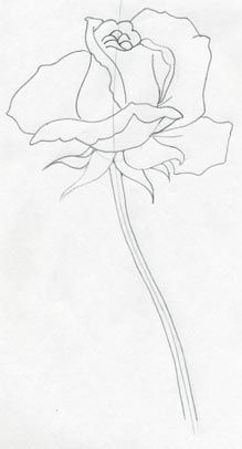 219x406 Rose Drawings, Rose Pencil Drawings, Drawing Of A Rose Roses