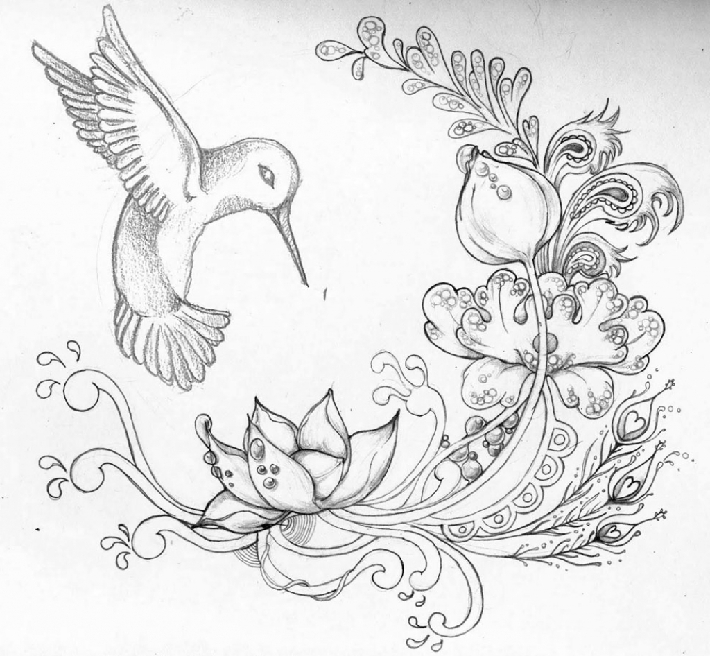 1024x946 Pencil Draw Picture In All Flower Best Rose Drawings Ideas