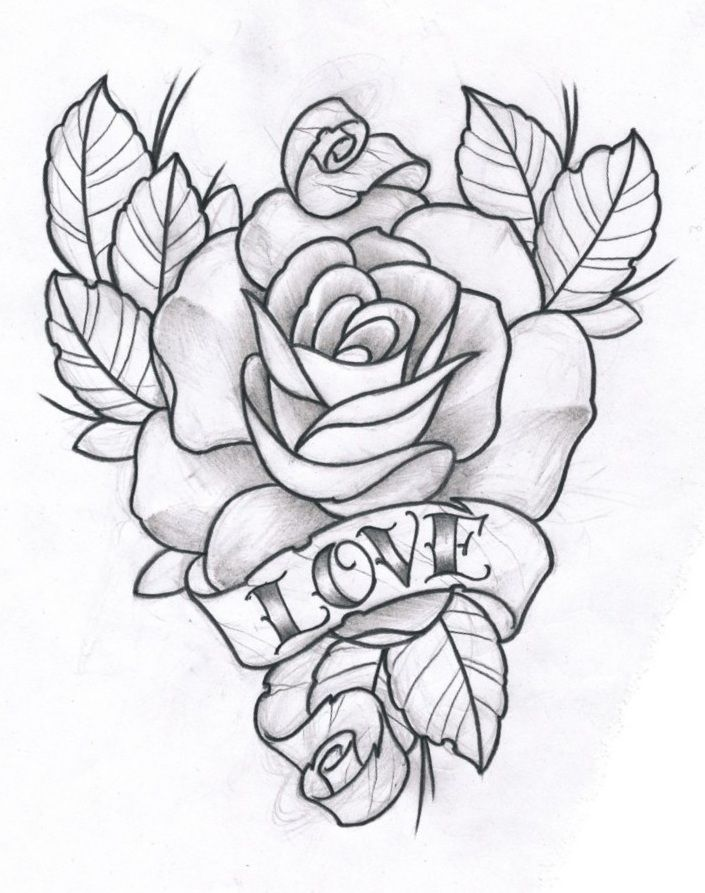 705x893 Photos Love Roses Drawing Pic,