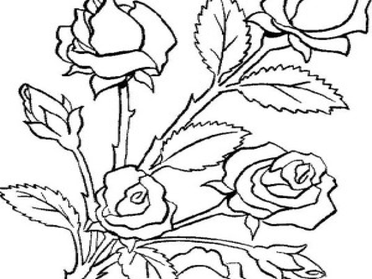 1280x960 Bouquet Of Roses Coloring Pages Flower Is Made Page