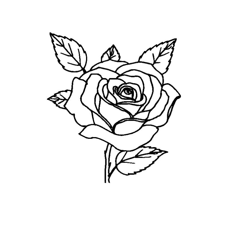 809x788 Rose Flower Very Beatifull Coloring For Kids Flowers