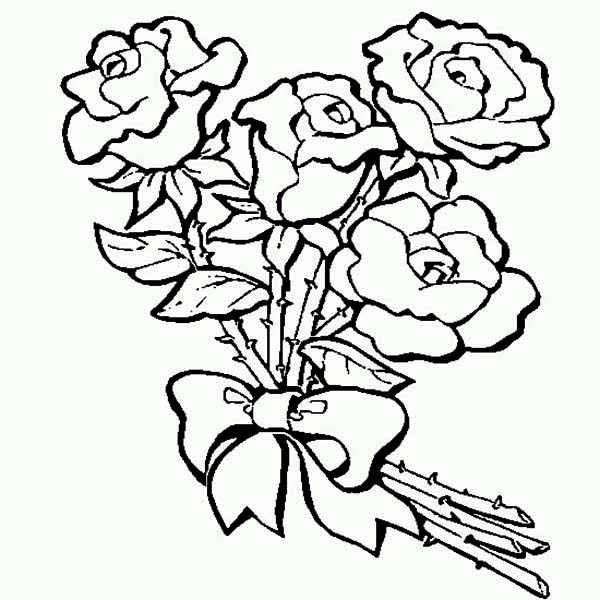 600x600 Coloring Pages For Kids Roses Color Bros