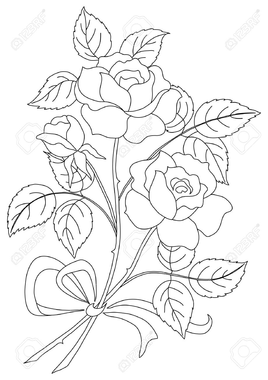 919x1300 Rose Flower Bunch Drawing Bunch Of Roses Sketch Royalty Free Stock