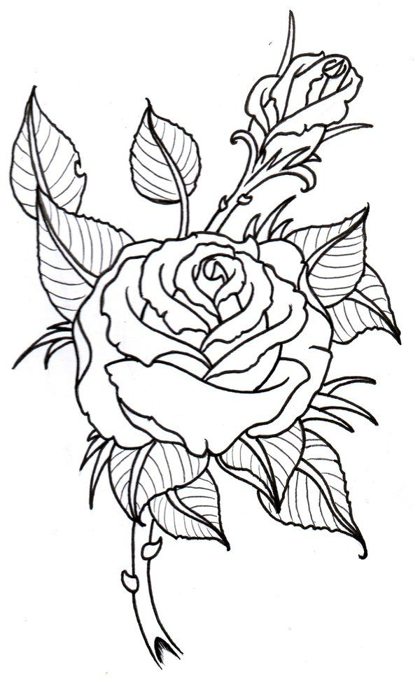 600x973 Collection Of Latest Traditional Rose Tattoo Stencil