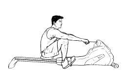 256x171 Cardio Rowing Machine Universal Health Amp Fitness
