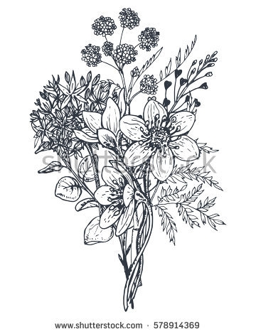 360x470 Flower Bouquet Drawings Flower Bouquet Stock Images Royalty Free