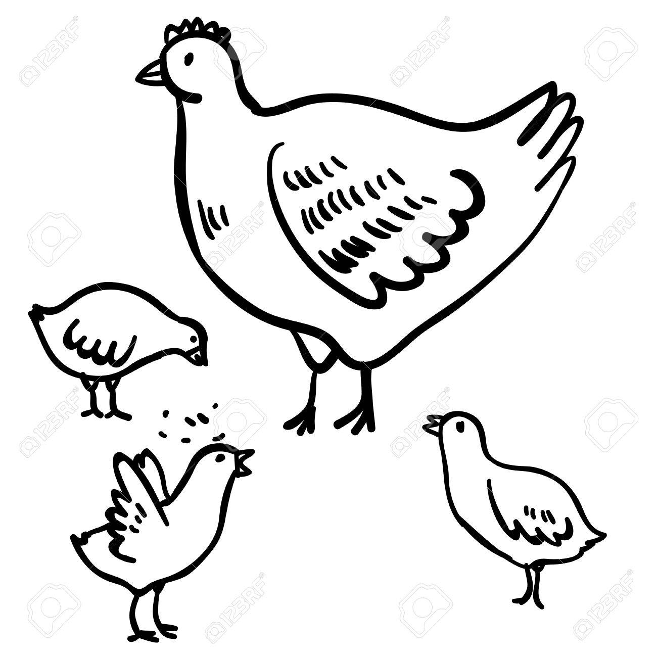 1300x1300 Vector Illustration With Four Doodle Cute Chicken And Hen