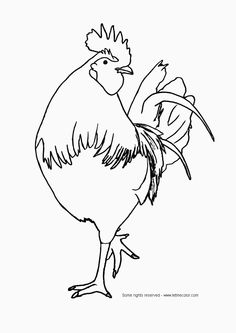 236x333 Rooster,chicken,drawing,coloring,animals Coloring Beautiful