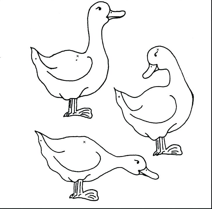 728x718 Rubber Duck Coloring Page Rubber Ducky Drawing Rubber Ducky