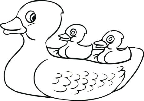 476x333 Top Rated Duck Coloring Pages Pictures Archive Page In Tag
