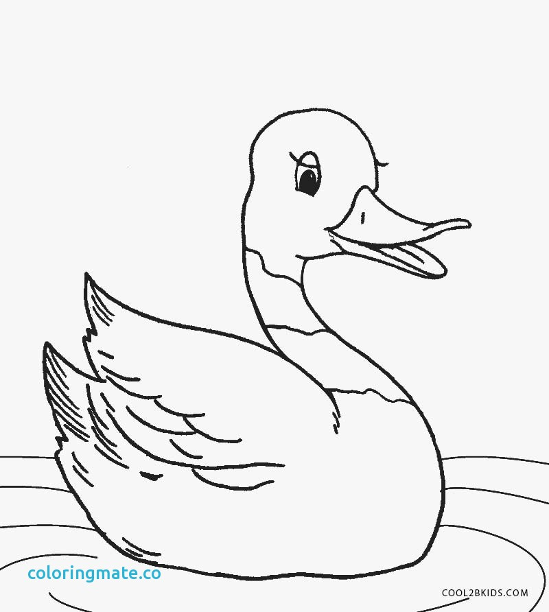 800x892 Duck Coloring Page Luxury Rubber Duck Coloring Pages Coloring Home