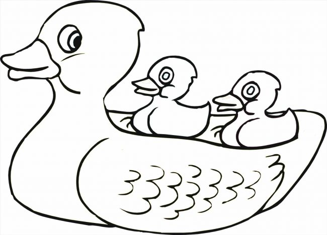 650x468 Rubber Duck Coloring Pages