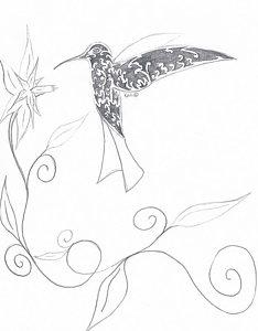 234x300 Hummingbird Drawings