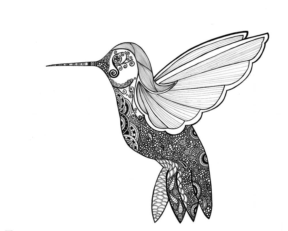 Ruby Throated Hummingbird Drawing at GetDrawings.com | Free for ...