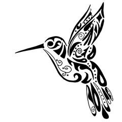 240x240 Search Photos Hummingbird