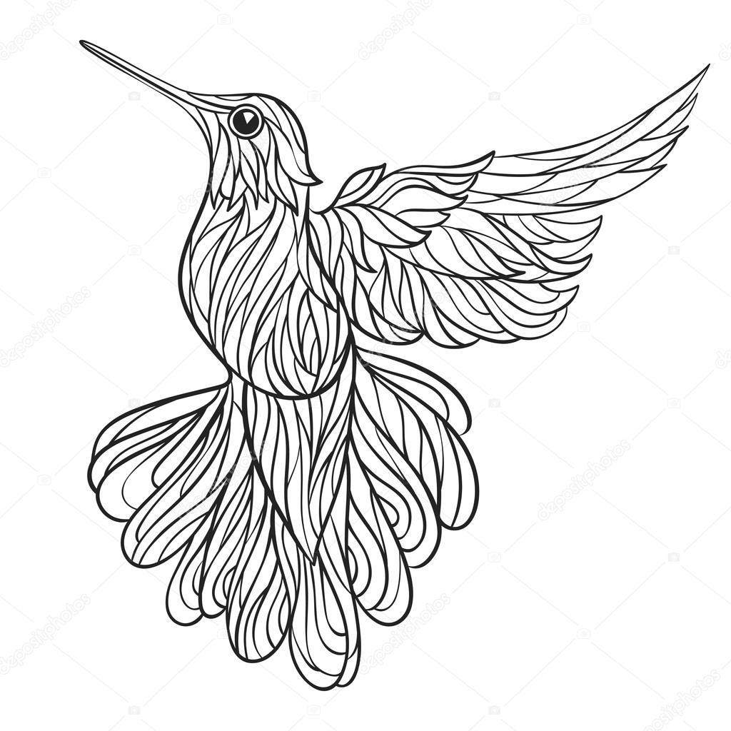 1024x1024 Vector Monochrome Hand Drawn Illustration Of Colibri. Stock