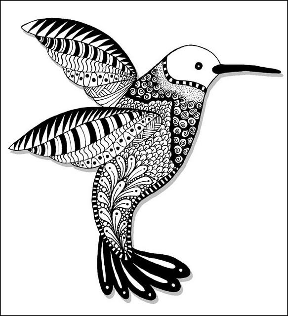 583x640 Drawn Hummingbird Doodle