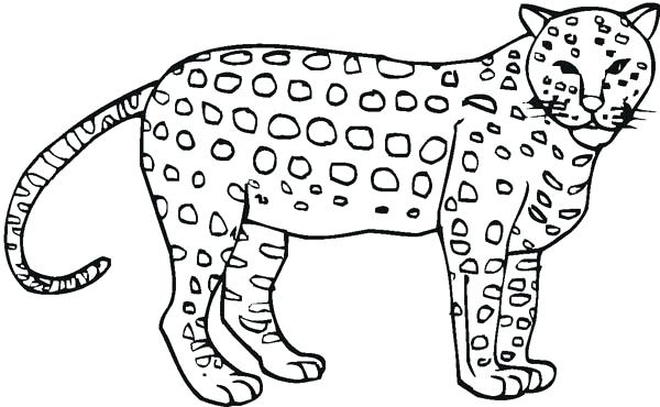 600x370 Awesome Cheetah Coloring Page Pages For Toddlers Murs