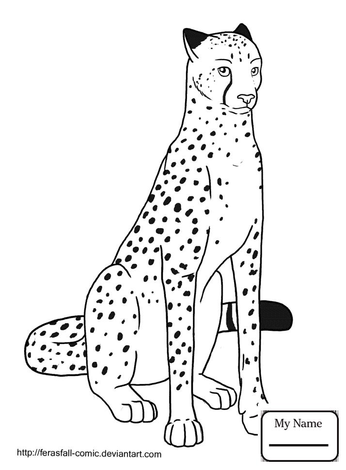 714x969 Coloring Pages Running Cheetah Mammals
