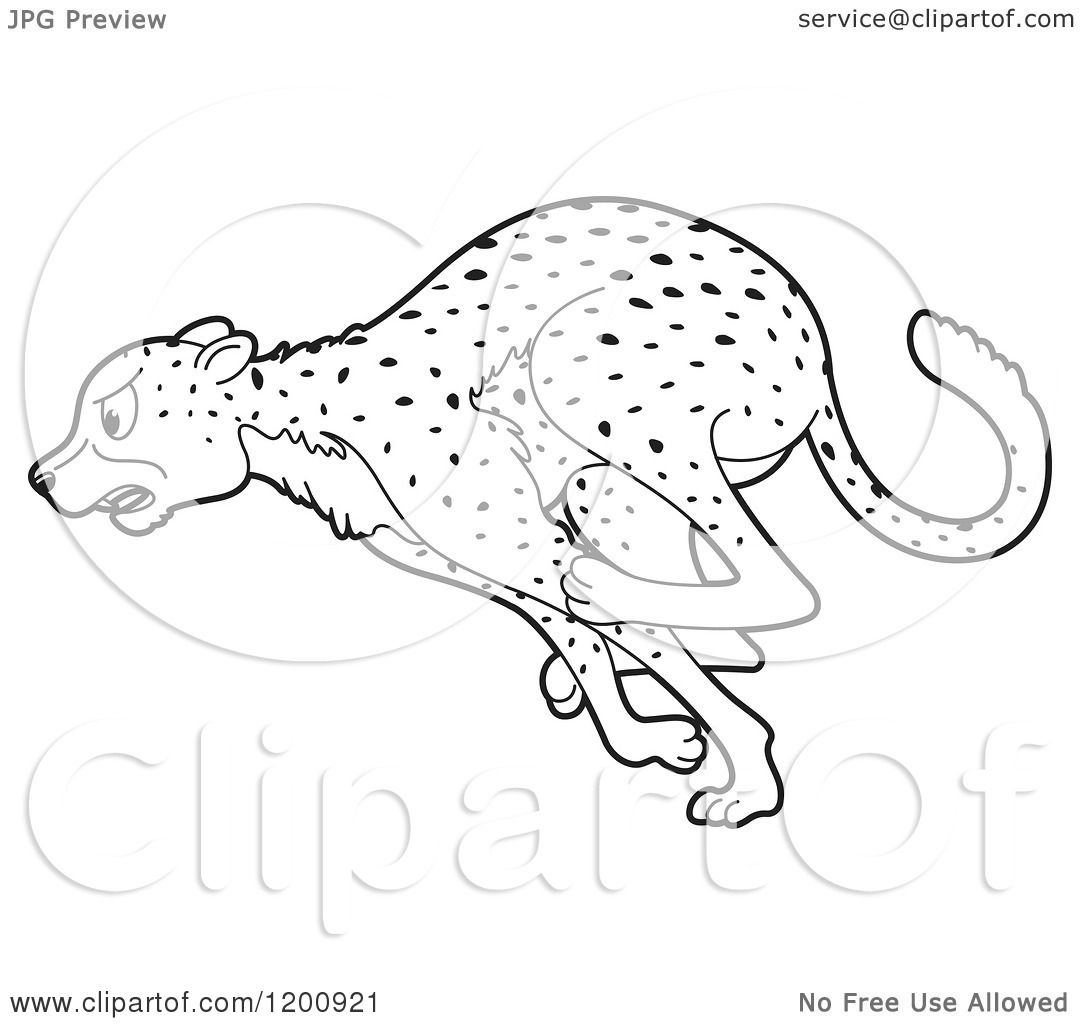 1080x1024 Cartoon Of A Black And White Outlined Running Cheetah