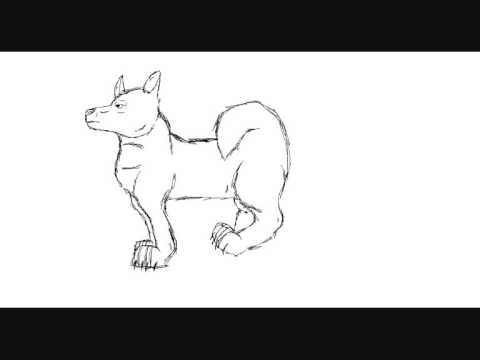 480x360 How To Drawrunning Dog