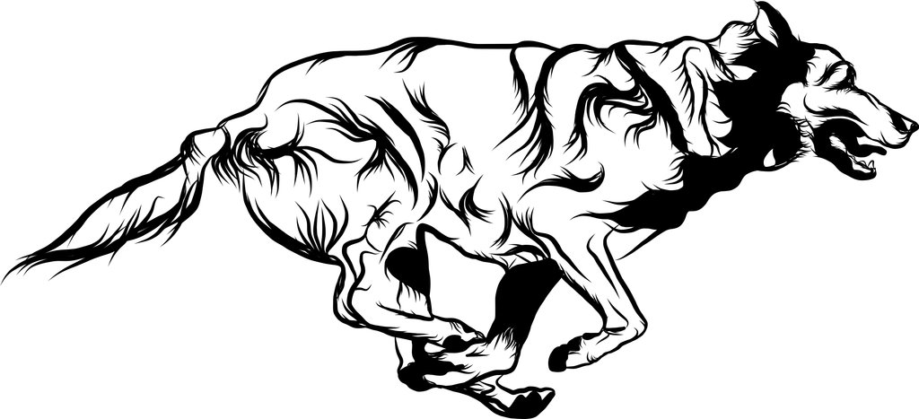 1024x467 Running Dog By 9fitp