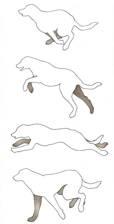 457x900 Running Dogs Drawing By Sydney Stafl