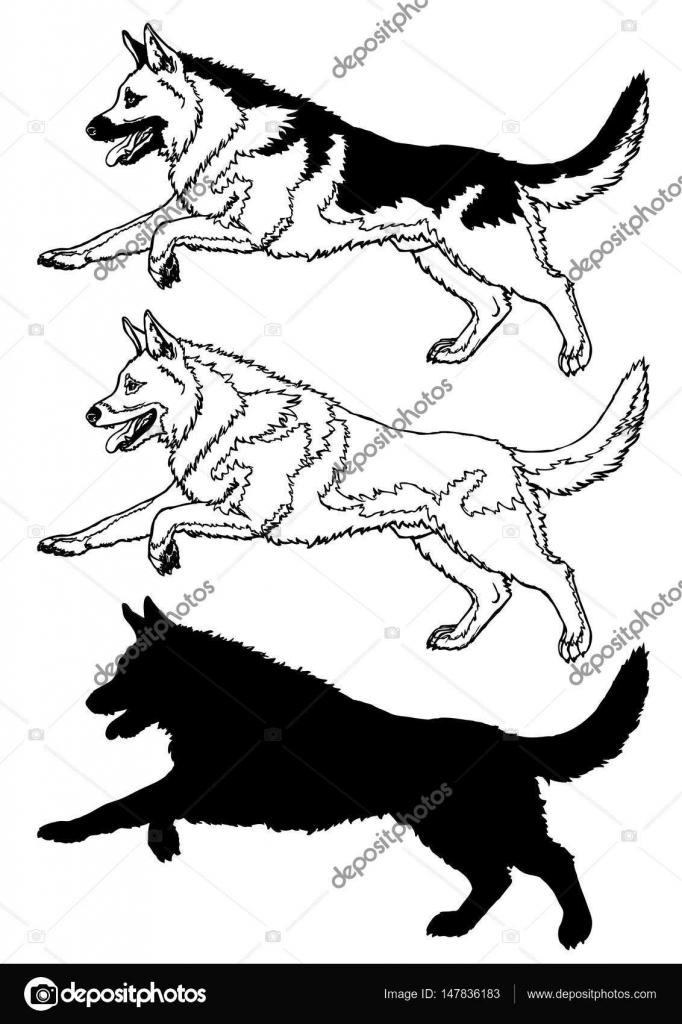 682x1024 Running Dog Contour Line On White Stock Vector Irbis Nariel
